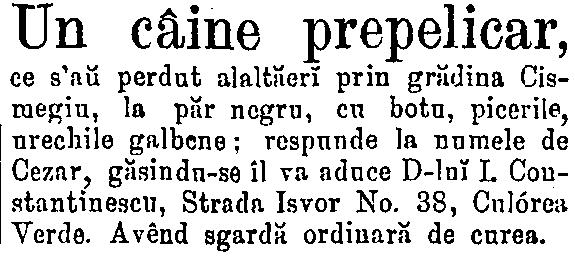 Timpul 18 aprilie 1877 - caine prepelicar