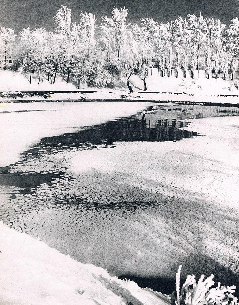 2-lacul-herastrauanii-80